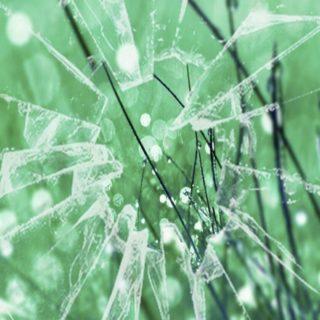 Glass green iPhone5s / iPhone5c / iPhone5 Wallpaper