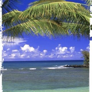 Beach Resort iPhone5s / iPhone5c / iPhone5 Wallpaper