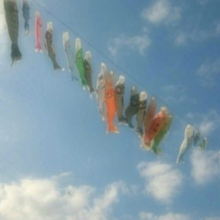 Carp streamer sky iPhone5s / iPhone5c / iPhone5 Wallpaper
