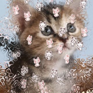 glass cat iPhone5s / iPhone5c / iPhone5 Wallpaper