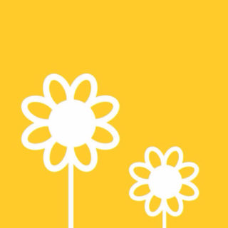 Cool picture yellow flower iPhone5s / iPhone5c / iPhone5 Wallpaper