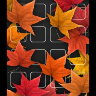 Shelf red autumn leaves flower black iPhone5s / iPhone5c / iPhone5 Wallpaper