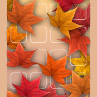 Shelf red autumn leaves flower tea iPhone5s / iPhone5c / iPhone5 Wallpaper