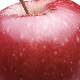 Food apple red iPhone5s / iPhone5c / iPhone5 Wallpaper