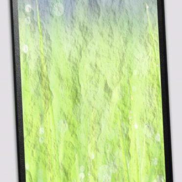 Binder grass iPhone6s / iPhone6 Wallpaper