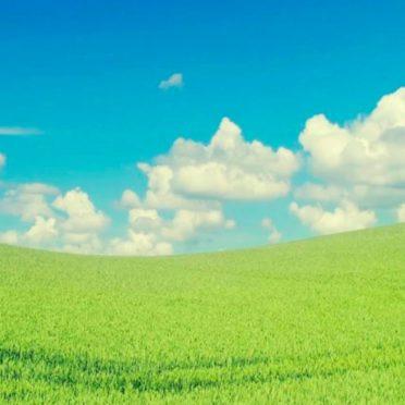 cloud  sky  green iPhone6s / iPhone6 Wallpaper