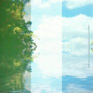 Landscape tree iPhone8 Wallpaper
