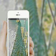 Tower smartphone iPhone8 Wallpaper
