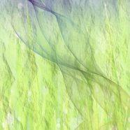 Gradient light and dark iPhone8 Wallpaper
