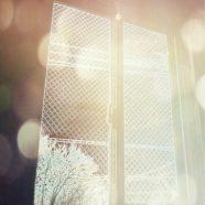 Window Landscape iPhone8 Wallpaper