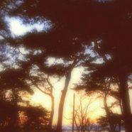 Evening landscape seaside iPhone8 Wallpaper