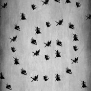 Fairy gray iPhone8 Wallpaper