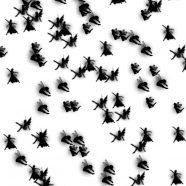 Fairy monochrome iPhone8 Wallpaper
