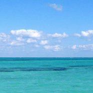 landscape  sea iPhone8 Wallpaper
