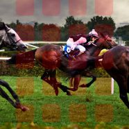 Landscape horse racing  red  shelf iPhone8 Wallpaper
