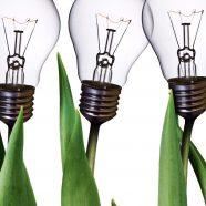 Light bulb green flower iPhone8 Wallpaper