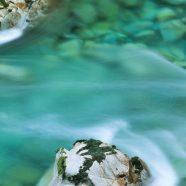 Natural river iPhone8 Wallpaper
