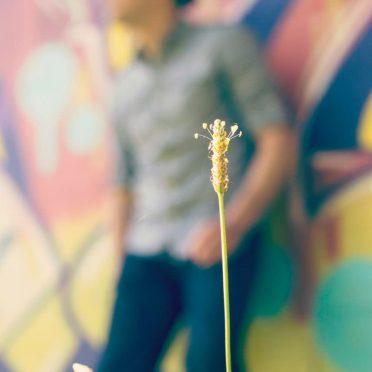 Flower blur male character iPhone8 Wallpaper