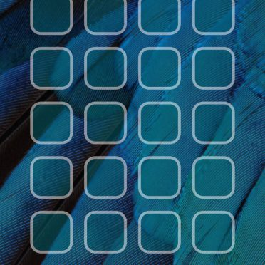 Feather blue green shelf cool iPhone8 Wallpaper