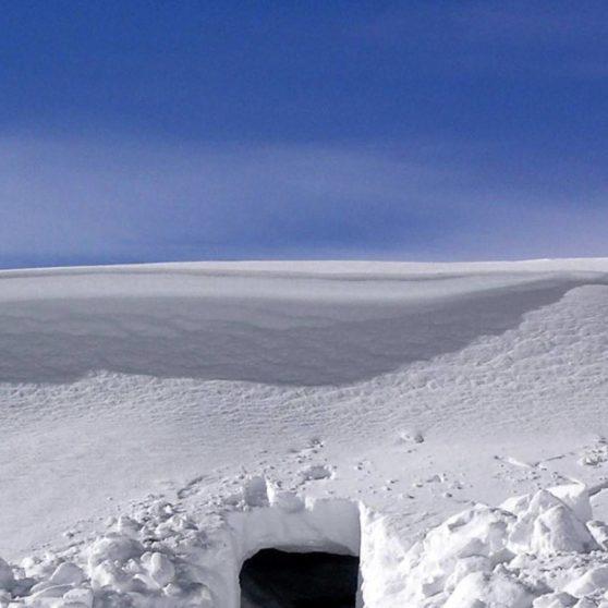 Landscape snow iPhoneX Wallpaper