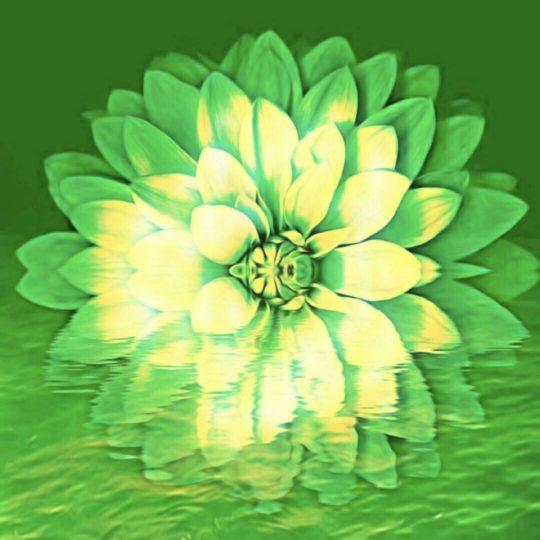 Flor verde Fondo de Pantalla SmartPhone para Android