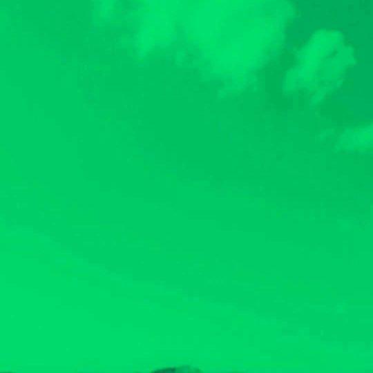 Lago Cisne Fondo de Pantalla SmartPhone para Android
