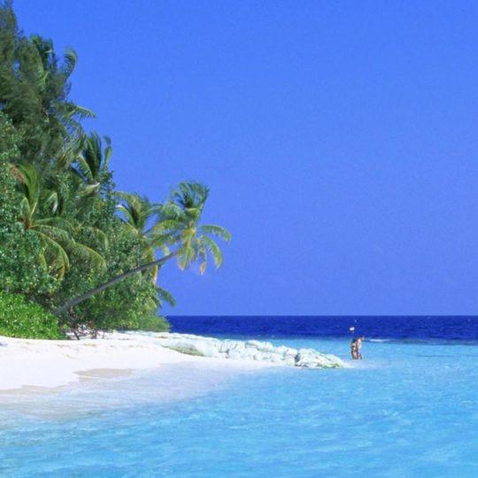 paisaje de la playa Fondo de Pantalla SmartPhone para Android