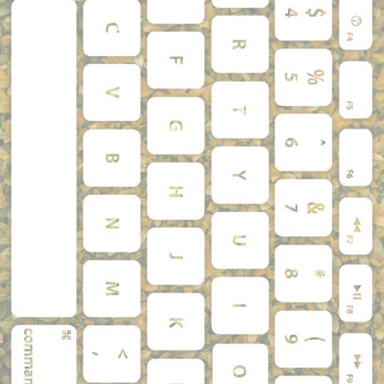 Teclado de la hoja de color blanco amarillento Fondo de Pantalla SmartPhone para Android