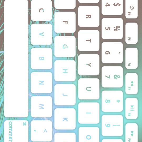 teclado de color blanco pálido Fondo de Pantalla SmartPhone para Android