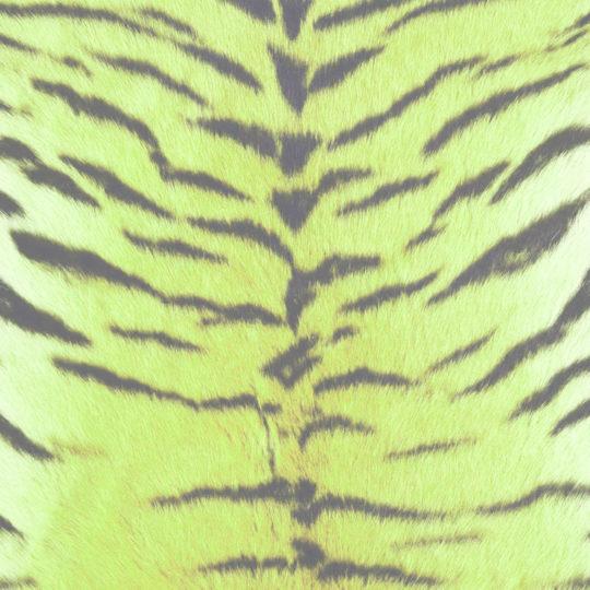 Modelo de la piel de tigre verde amarillo Fondo de Pantalla SmartPhone para Android