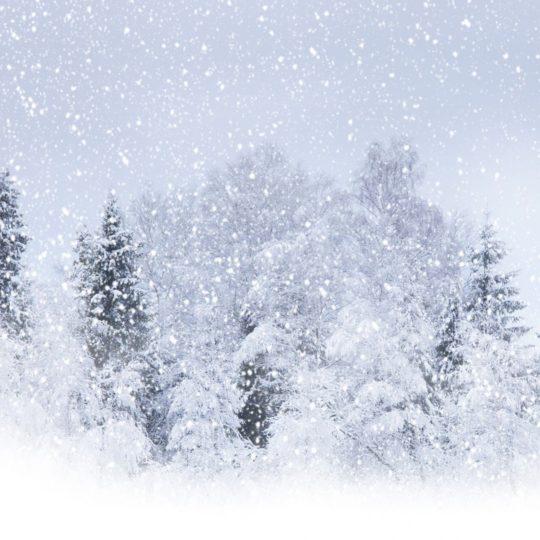 paisaje de la nieve Fondo de Pantalla SmartPhone para Android