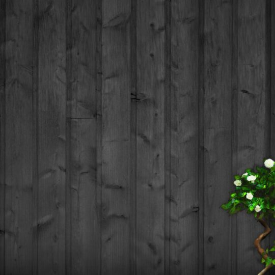 guay verde negro Fondo de Pantalla SmartPhone para Android