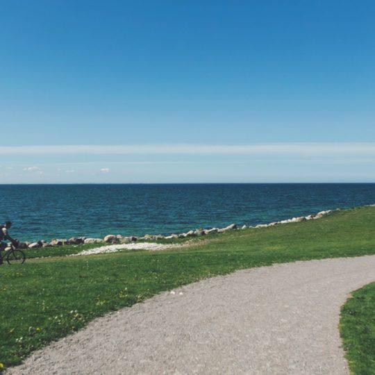 paisaje del mar Camino de la hierba verde azul Fondo de Pantalla SmartPhone para Android