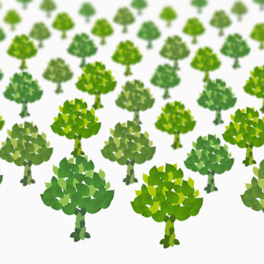 árbol verde blanco Fondo de Pantalla SmartPhone para Android