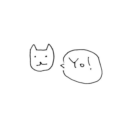 Ejemplos gato blanco Yo! Fondo de Pantalla SmartPhone para Android
