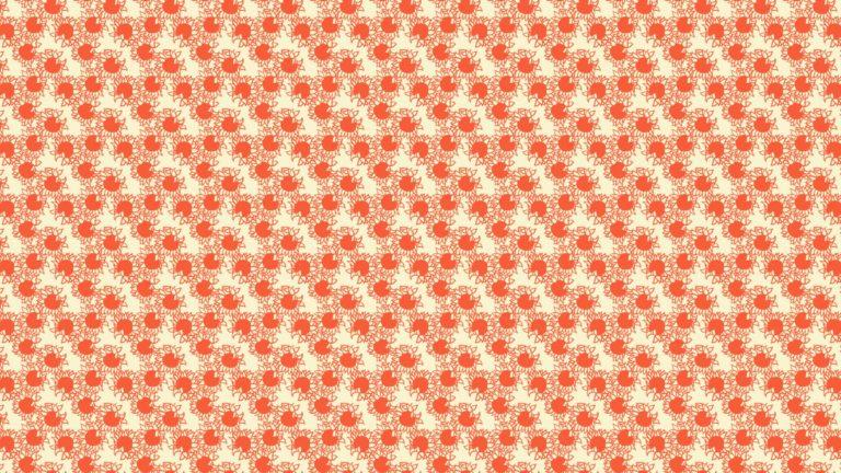 Patrón de girasol rojo para mujeres Fondo de escritorio de PC / Mac