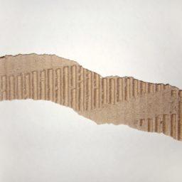 Cartulina rasgada té blanco papel de color iPad / Air / mini / Pro Wallpaper