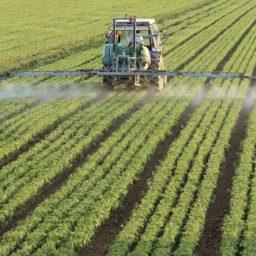 vehículos de la agricultura tractores verdes iPad / Air / mini / Pro Wallpaper