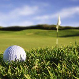 Paisaje verde pelota de golf iPad / Air / mini / Pro Wallpaper