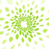logo de la manzana Omotesando