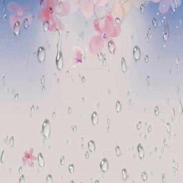 Lluvia de cerezo Fondo de Pantalla de iPhone6s / iPhone6