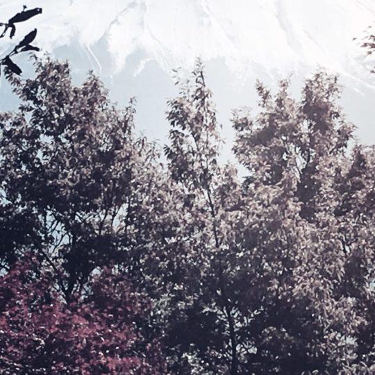 Mt. Fuji Pemandangan Android SmartPhone Wallpaper