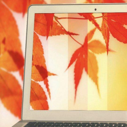 Musim gugur meninggalkan PC Android SmartPhone Wallpaper