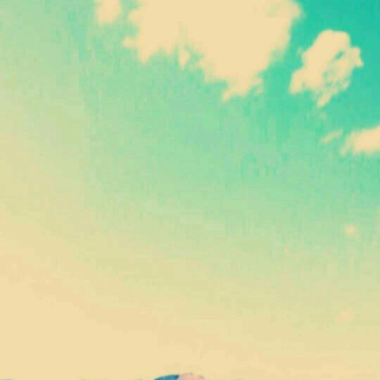 Danau Angsa Android SmartPhone Wallpaper