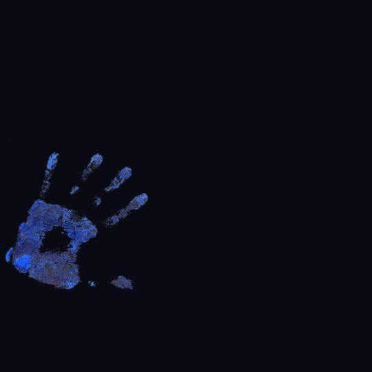Keren biru Hitam palm Android SmartPhone Wallpaper
