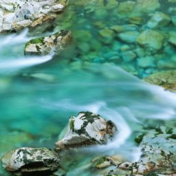 sungai alami iPad / Air / mini / Pro Wallpaper