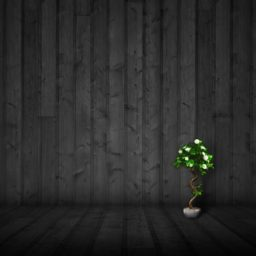 hijau hitam keren iPad / Air / mini / Pro Wallpaper