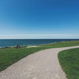 rumput jalan lanskap hijau laut biru iPad / Air / mini / Pro Wallpaper