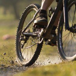 Sepeda sepeda jalan hijau iPad / Air / mini / Pro Wallpaper