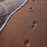 jejak kaki pantai pasir lanskap